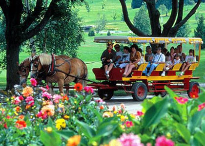 carriage tours in Mackinac
